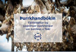 Þurrkhandbókin